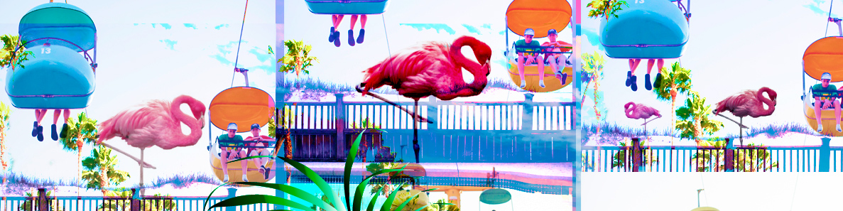 flamingo-the-fun-farm