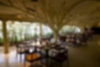 Top 10 Restaurants in Mumbai - Must Try