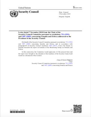 The SEMG's 2018 final report on Somalia