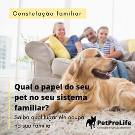 Qual o papel do seu pet no seu sistema familiar?