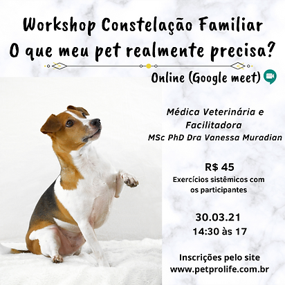 Workshop Constelação Familiar Sistêmica
