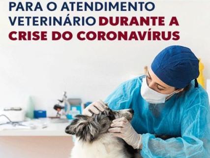 Cuidados no atendimento veterinário durante a pandemia pela COVID-19