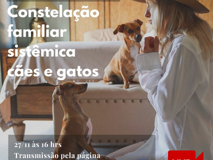 VÍDEO LIVE1 Constelação Familiar Sistêmica Cães e Gatos