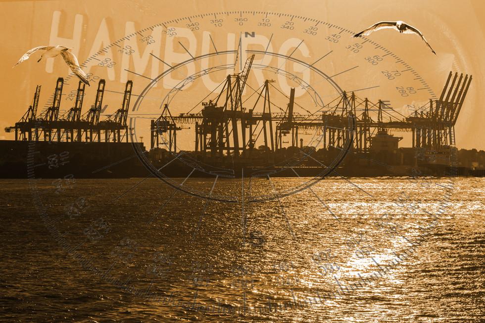 D71-3378-1e Hamburg Collage.jpg