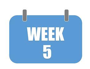 Week 5.jpg