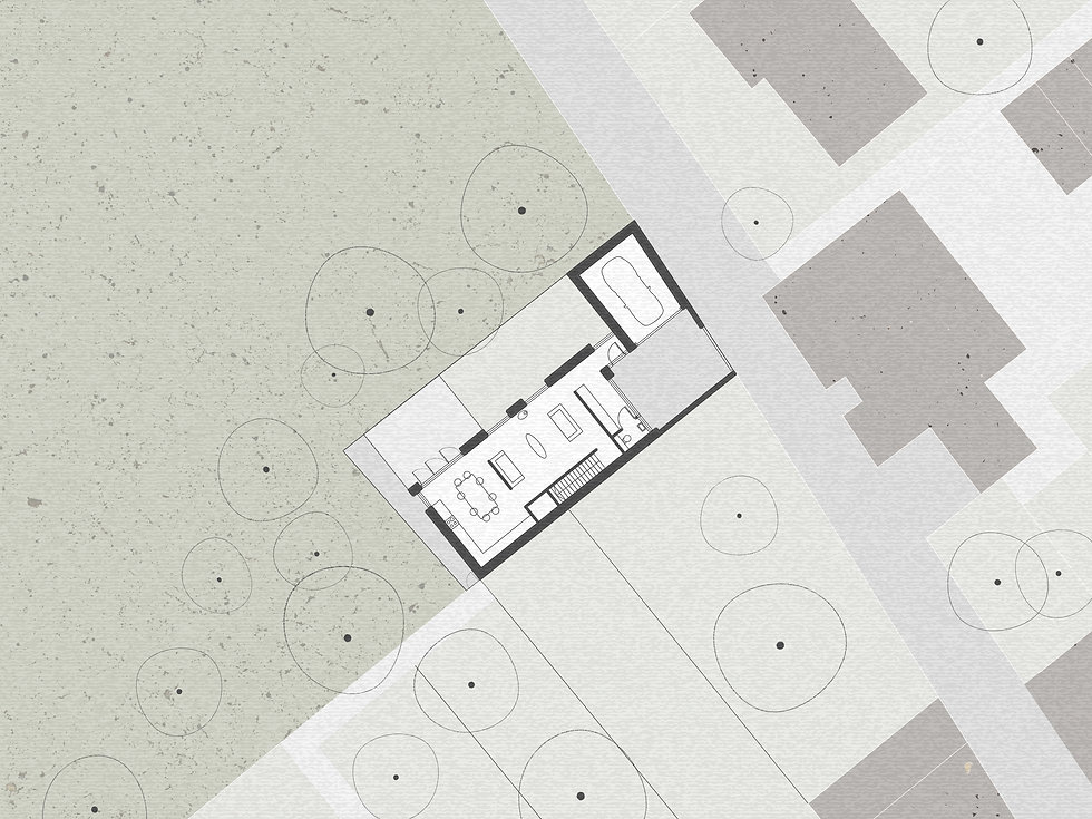 wr-ap_backyard house_site plan.jpg