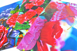 蜷川実花 クリアファイル__#蜷川実花 #MikaNinagawa_#Satellite_#art #artbook #artshop #artgallery_#現代アート #ギャラリー _#本 #本