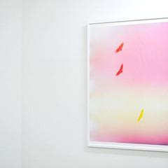 Mark Borthwick: Poster 02 / all the best bird's feel her, 2014 ポスター(フレーム入り)