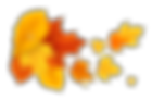 Yellow_Orange_Fall_Leafs_PNG_Clipart_Pic