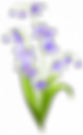 spring-flowers-clip-art-png-1.png