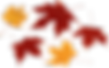 autumn-leaves-hd-png-autumn-png-leaf-png