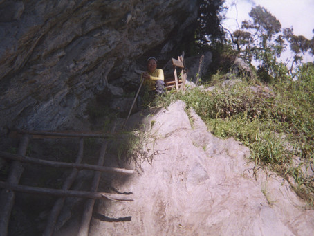 Day Seven: Further Descent through the Mud and Elephant Grass