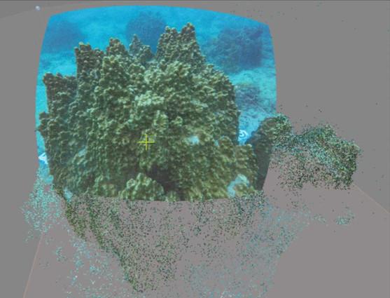 bottomlineprojects-3Dphotogrammatory_tha