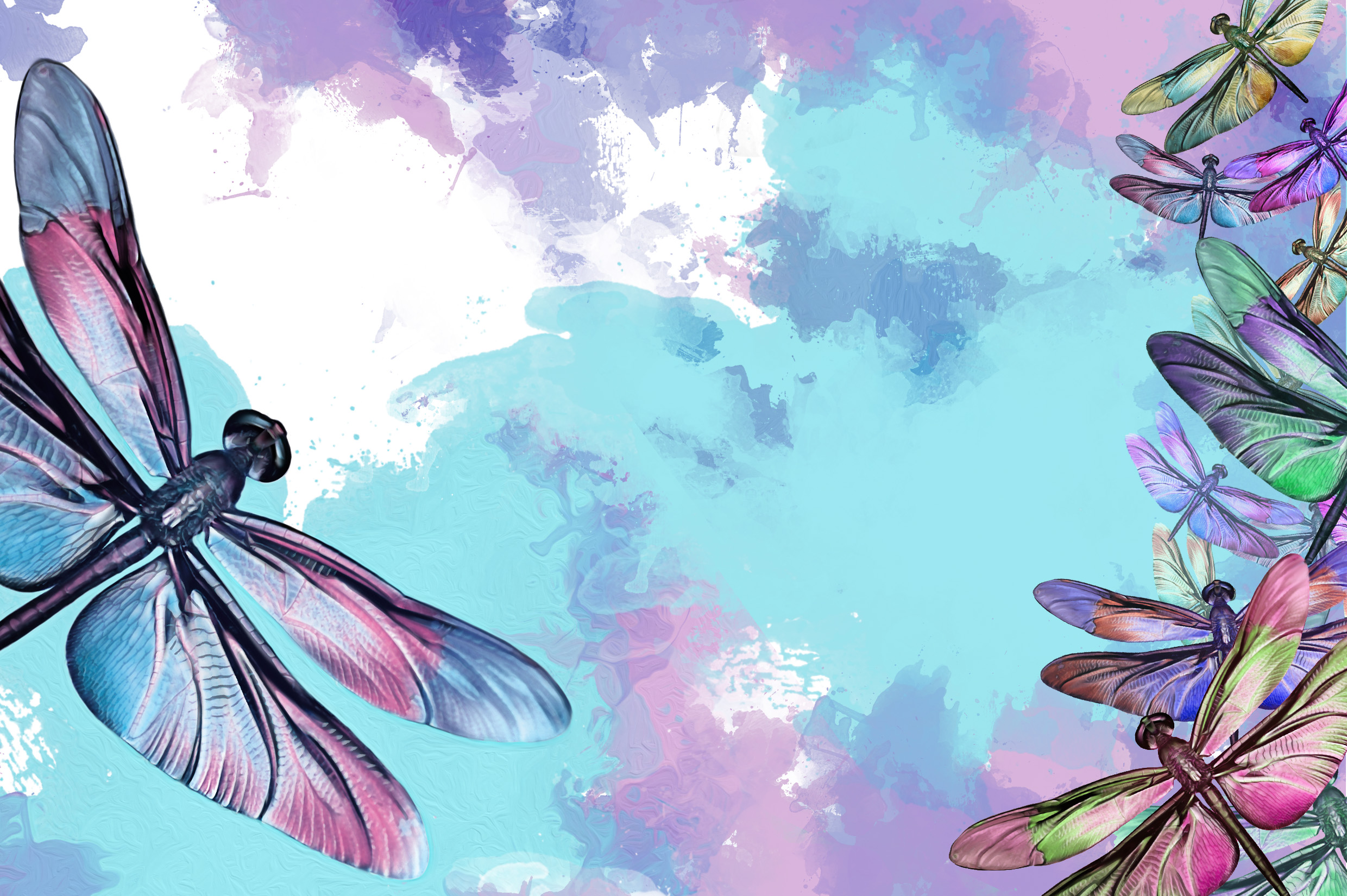 Dragon Fly's