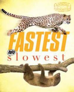 AO_fastest_cover