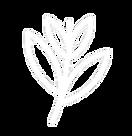 Leaf Left.png