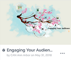 Engage Your Audience Icon.PNG