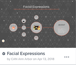 Facial Expressions Icon.PNG