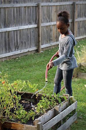 India_gardening.jpg