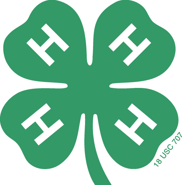 Michigan State University Extension 4-H