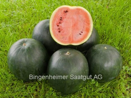Wassermelone 'SUGAR BABY'