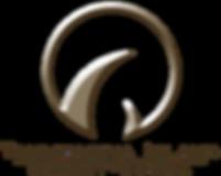 tir-logo.png