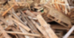 wood-leo-recycle.jpg