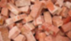 bricks-leo-recycle.jpg