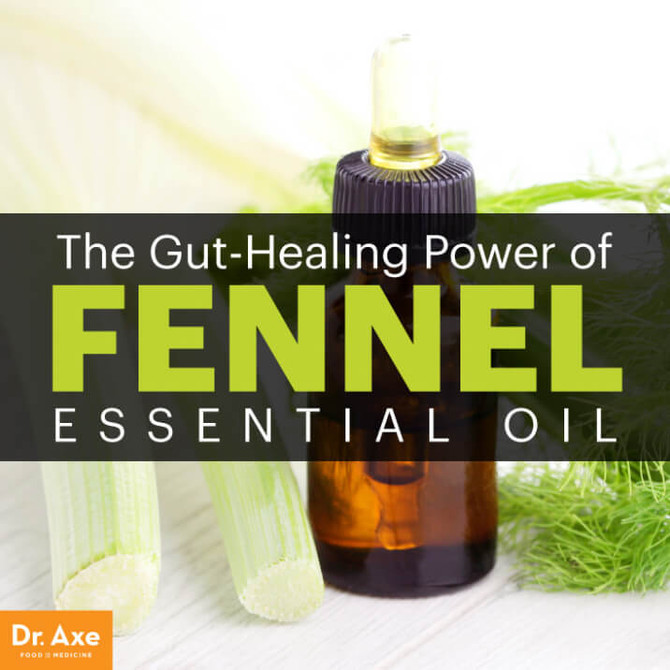 6 Benefits of Fennel Essential Oil (4 of Which Help Your Gut!)