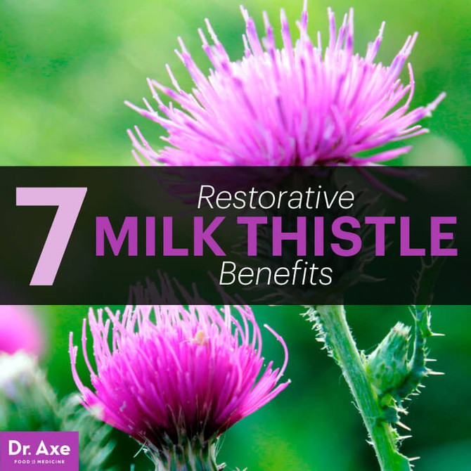 Milk Thistle Benefits: Detox the Liver & Boost Glutathione