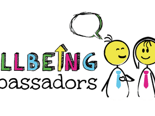 Health and Wellbeing Peer Coaches
