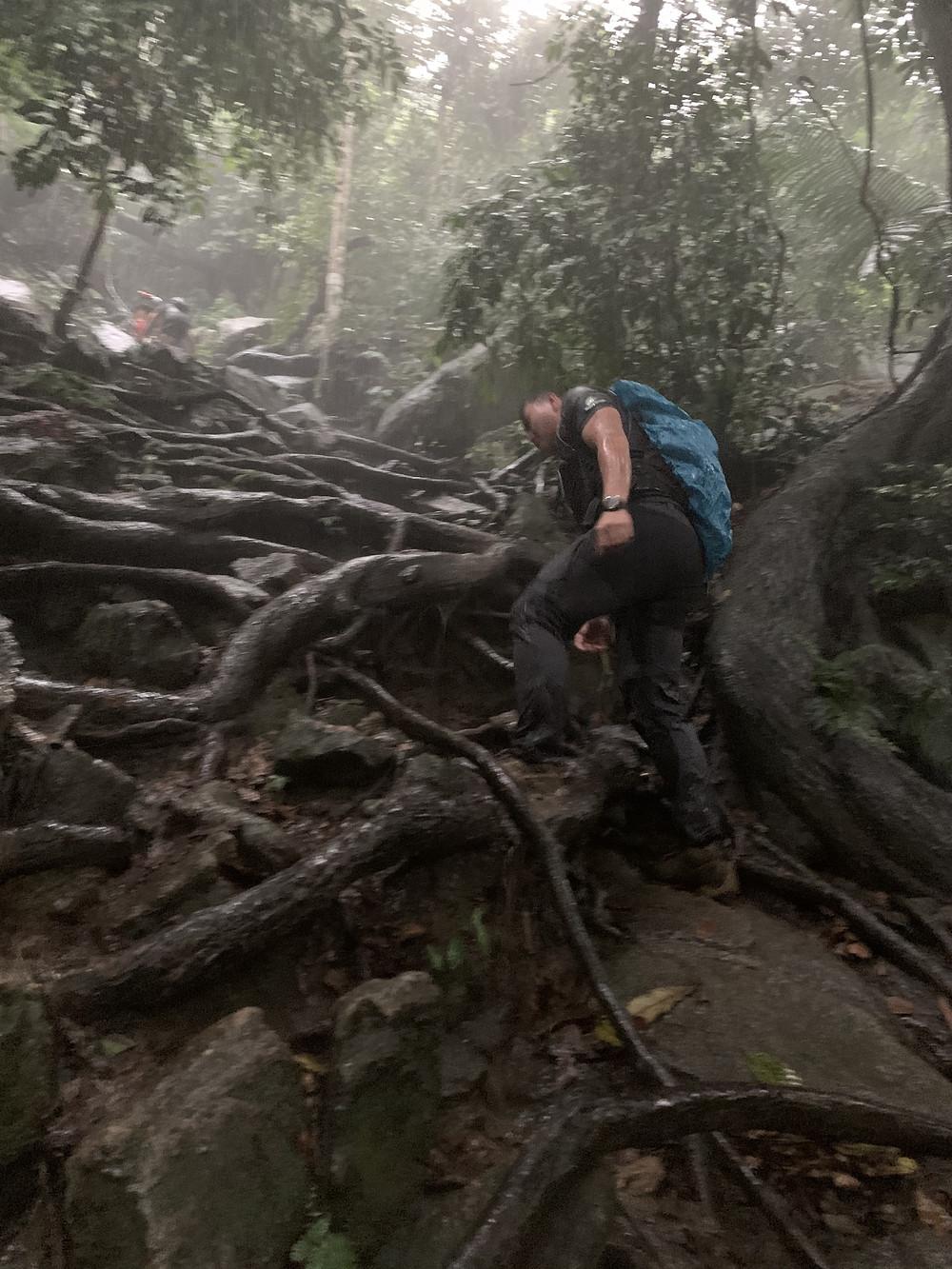 gunung datuk, malaysia hikes, gunung datuk rembau