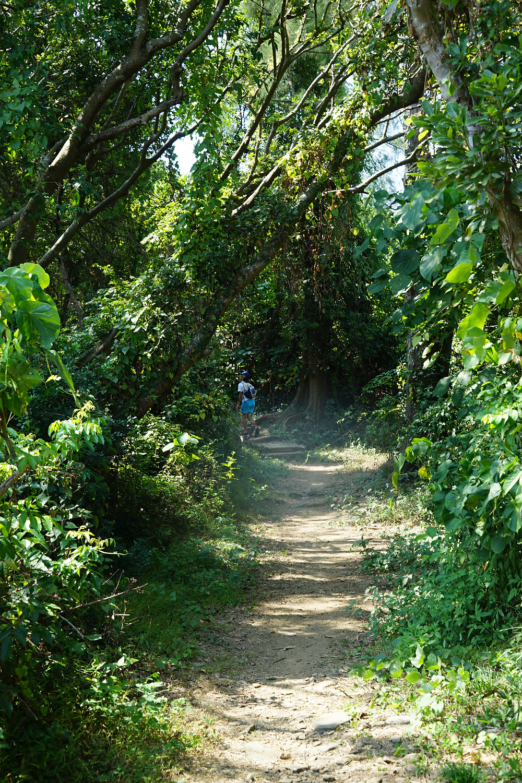 tung-ping-chau, best-hong-kong-hikes, hike-hong-kong, hong-kong-hikes