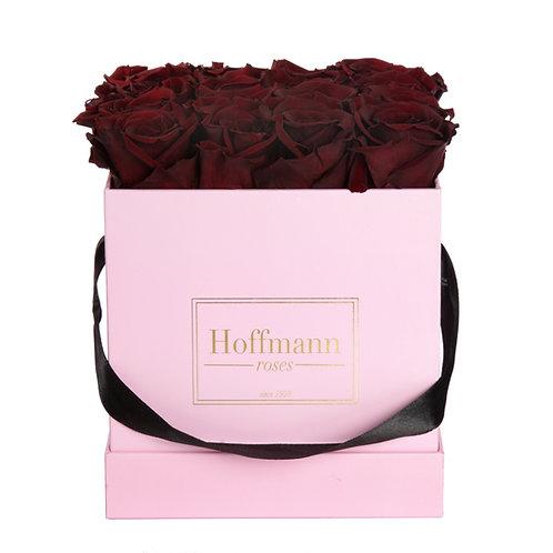 Infinity Box - burgundy red - Größe: M