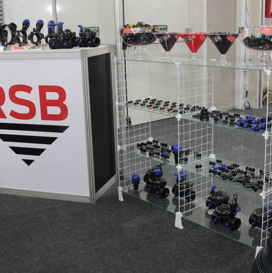 RSB FIIB 2018