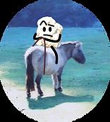 Pierre et cheval copie.png