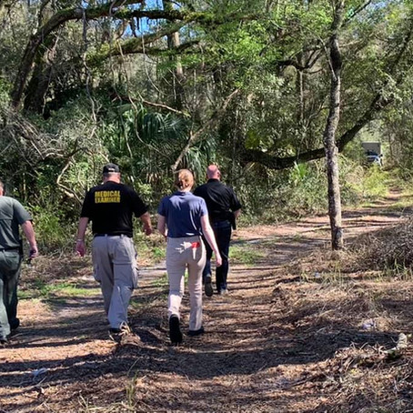 REMAINS FOUND IN WOODED AREA NEAR CRESCENT CITY