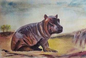 Baby Hippo - Al Dobra.jpg