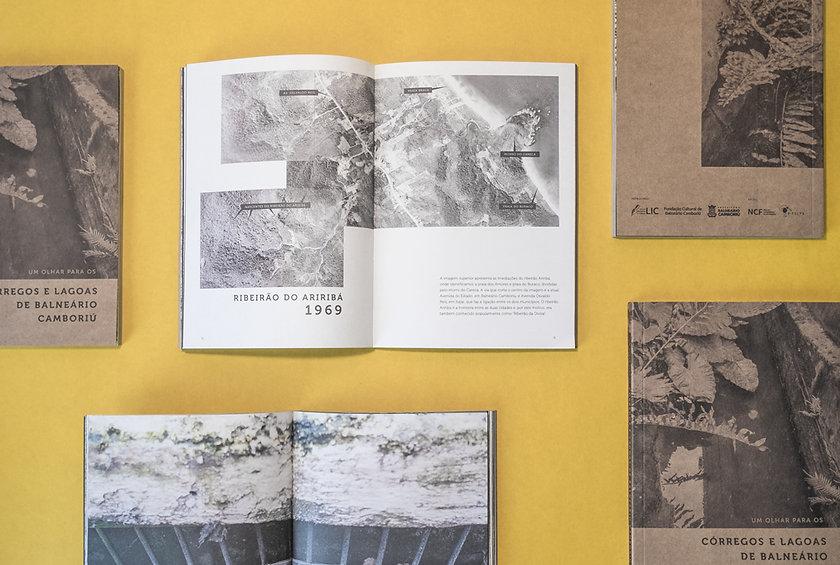 livro-web.jpg