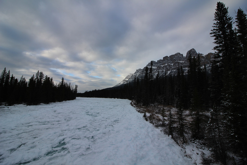 Bow River & Castle Mountain