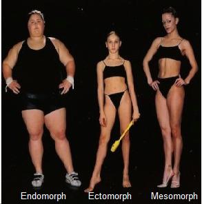 The Three Body-types