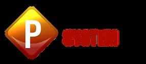 Logo PERFORMER SYSTEM