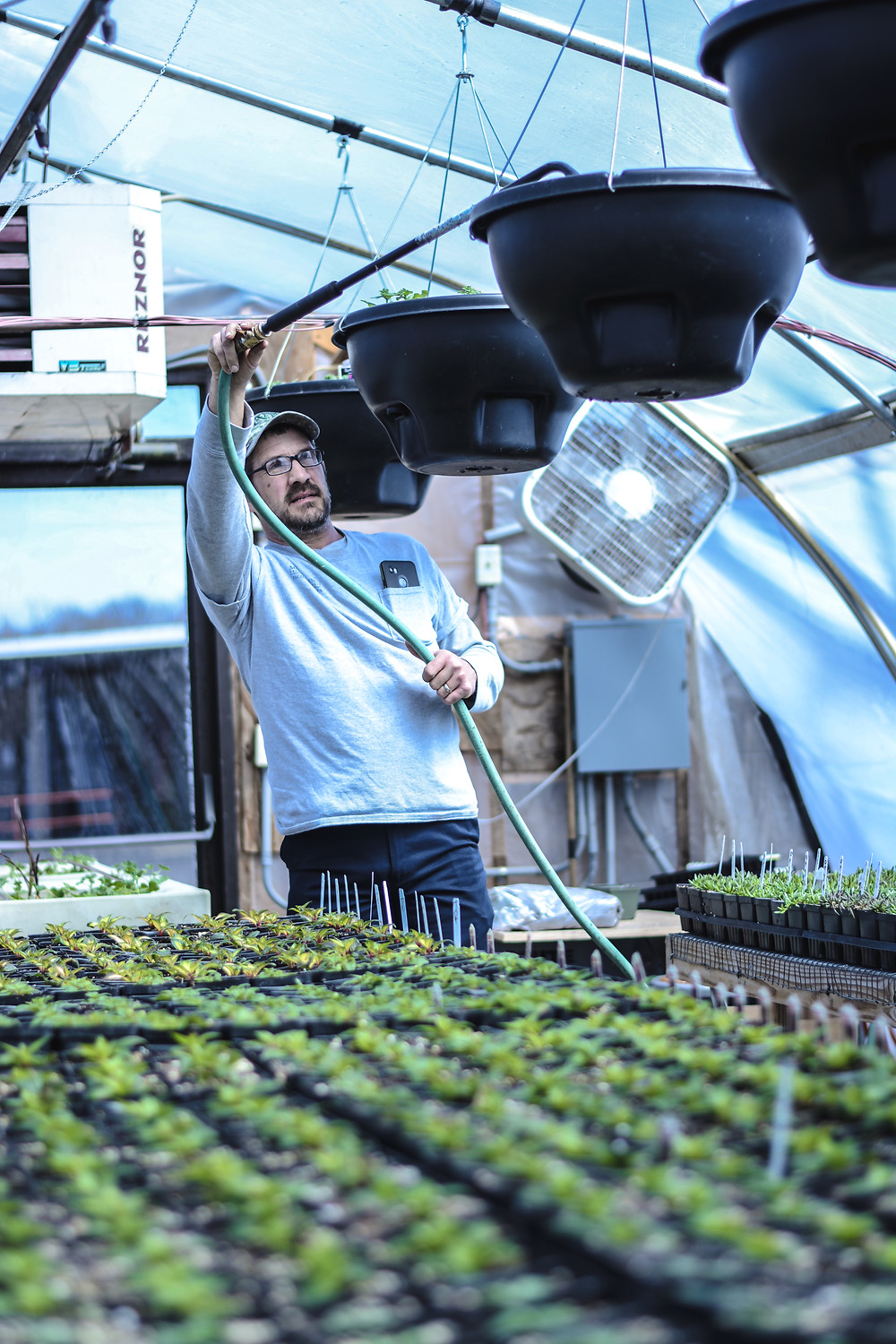 Brent Overholt waters and tends to the plants in the MVNU greenhouse. Overholt, one of four full-time grounds workers, maintains the greenhouse and flowerbeds all across campus and downtown at the pavilion next to Buchwald Center.