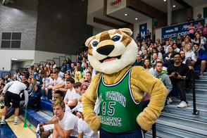 Cougar crazies call on students for ideas
