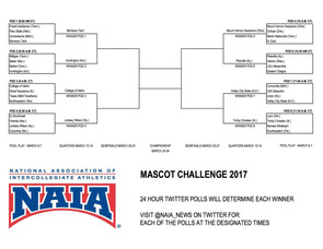 Casey Cougar to compete in mascot quarterfinals