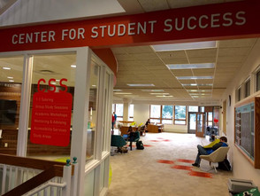 Radcliffe appointed Director for Student Success