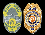 badges pic.png