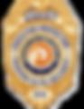 vip sec badge_burned.png