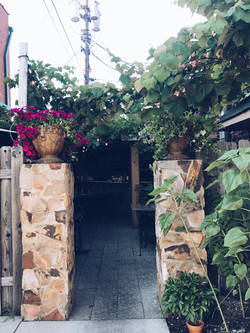 Our flourishing patio