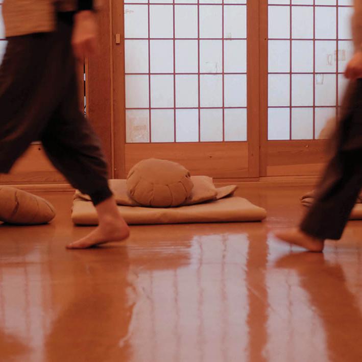 Tuesday ZOOM Intro to Zen 7-8pm  (3)